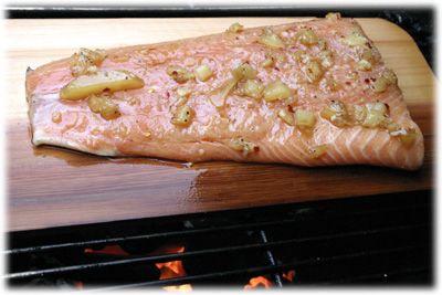 Mojo Salmon Marinade   tasteofBBQ.com