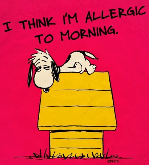 Okay Jonathan, this one is TOTALLY for you. (But I'll cut you a break a little bit because you get it from me!).  Allergic to mornings quote via www.Facebook.com/Snoopy
