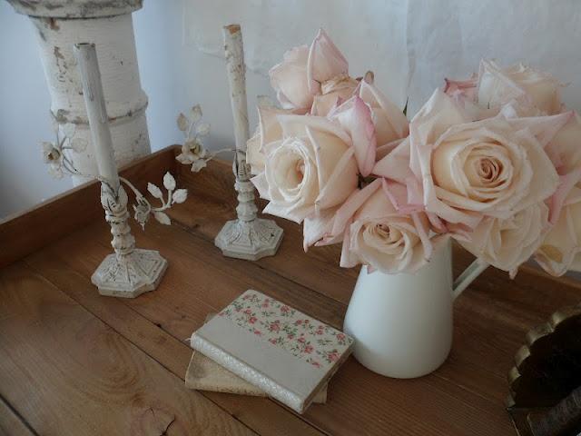 Soft and lovelyBeautiful Rose