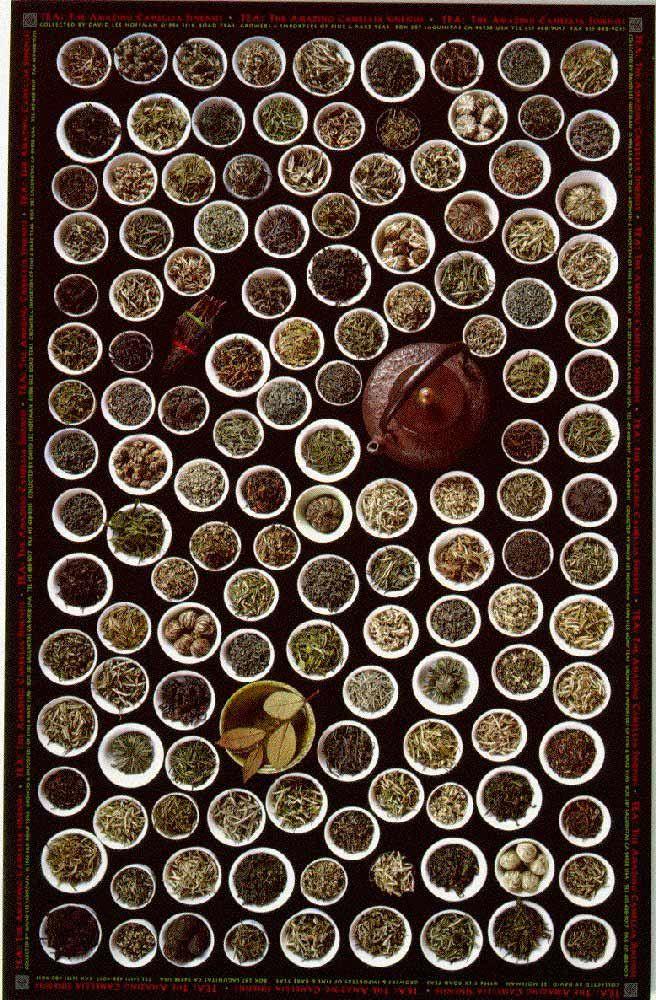 Resultados de la Búsqueda de imágenes de Google de http://www.gmushrooms.com/Posters/Tea.jpg