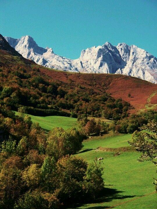 Pandebano, Cabrales, #Asturias.