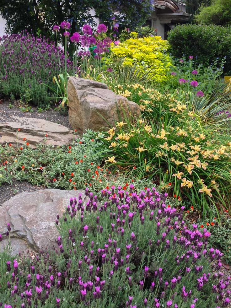 17 Best Images About Planting Combinations On Pinterest