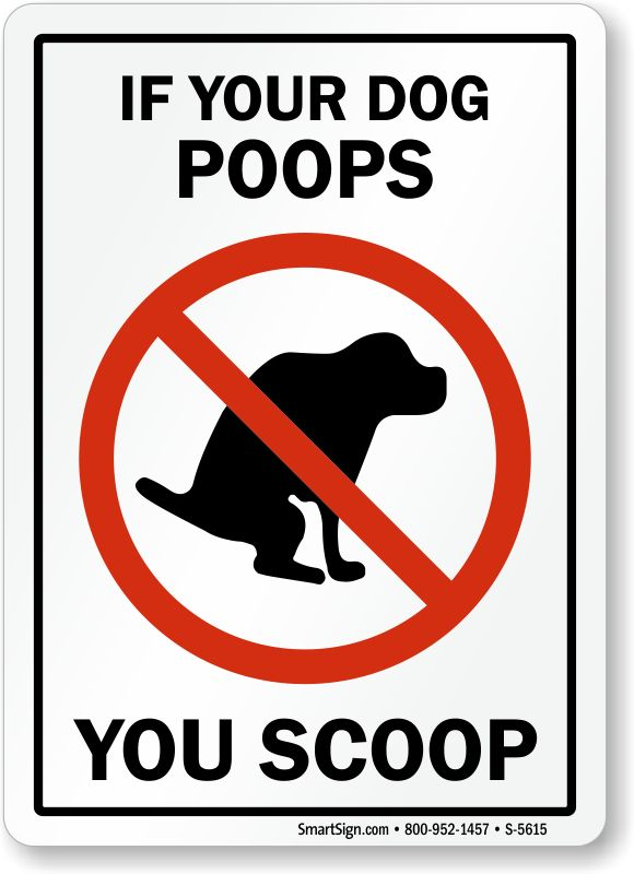 26 Best Dog Poop And Pee Jokes Images On Pinterest