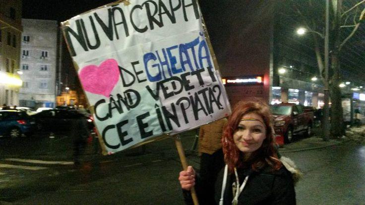 Colecție de pancarte de la proteste | Dana Gonț