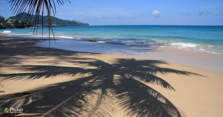 Palm Tree Shadow on Surin Beach, Phuket, Thailand on a sunny day. Image by Kevin Hellon.