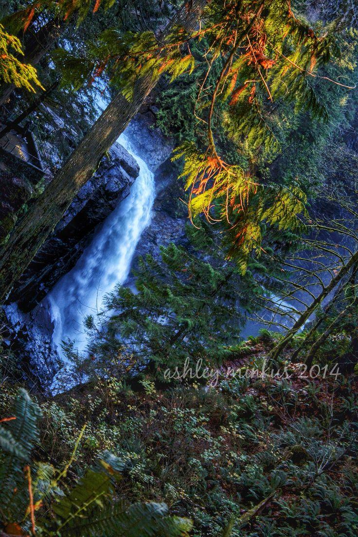 Elk Falls Trail, Campbell River, Vancouver Island, BC