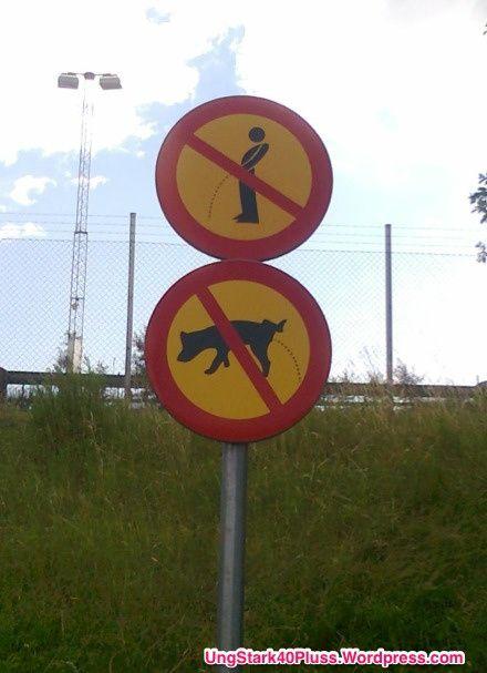 Rolig bild - Vad har män och hundar gemensamt?