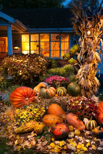 Create around sitting area and entry. Corn stalks, mums and jars of hydrangeas and hay bales.  incorporate some deep orange pumpkins too.  http://reesephoto.files.wordpress.com/2012/10/pumpkin-arrangement.jpg
