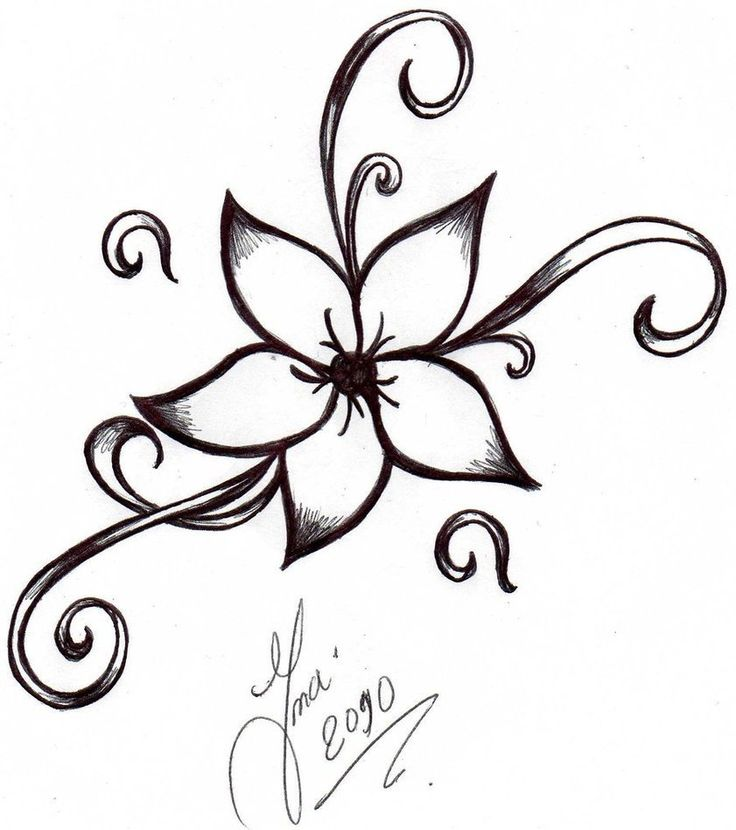 Best 25 Narcissus flower tattoos ideas on Pinterest Narcissus