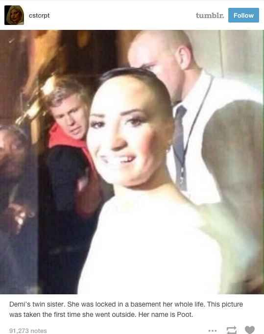 Poot Lovato began when Tumblr user cstcrpt uploaded this photo of Demi Lovato. I LITERALLY LAUGHED OUT LOUD OHMYGOSH POoT