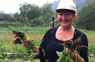 Eco-Adventure: How to Volunteer on an Organic Farm in Italy