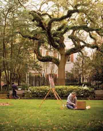 College of Charleston | Photos | Best College | US News