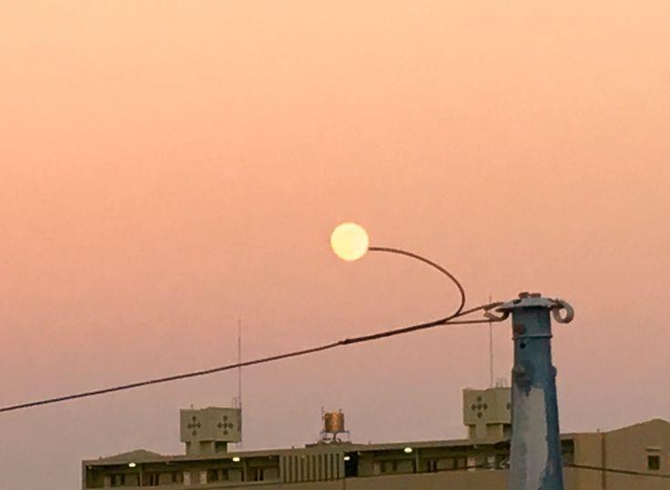 My Tethered Moon