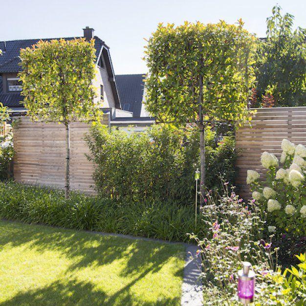 Moderne Wohngarten in Dormagen – Leistungsbild – struschie