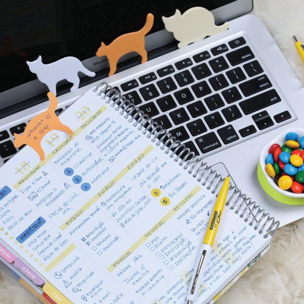 Tarefas anotadas com a sua própria letra é uma promessa solene de que irá cumprir o que escreveu.  Anote e anote em 2016! Compre online - www.paperview.com.br • Receba em casa #meudailyplanner #planner2016 #dailyplanner #loveplanner #organização #feitoamao #trend