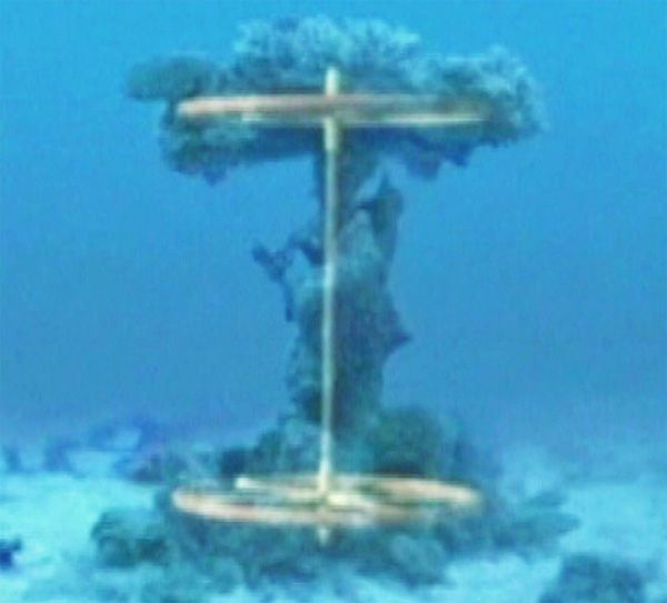 "A news report that stunned the world nine years ago about the discovery of possible ancient chariot wheels at the bottom of the Red Sea is suddenly gaining fresh attention with new video claiming ""irrefutable evidence"" that corroborates the find. In June 2003, WND interviewed Bible enthusiasts who dove the waters of the Red Sea, […]"