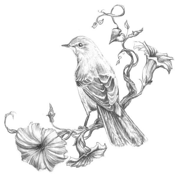 Great idea for a mockingbird tattoo.