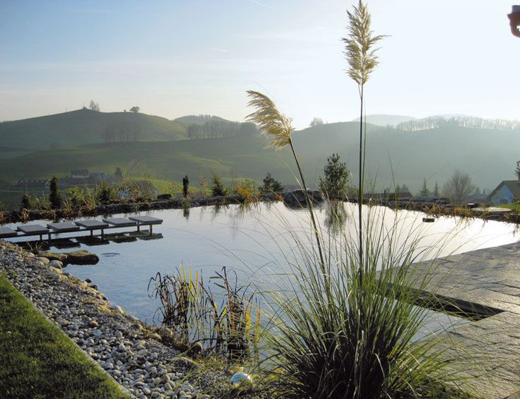 I love these. Sustainable Pools-03-1 Kind Design