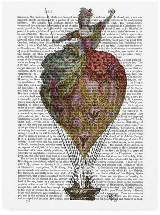 Fab Funky Hot Air Balloon Woman 3 Canvas Art - 27 x 33.5