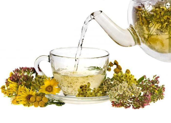травяной чай рецепты в домашних условиях