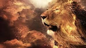Risultati immagini per leone hd