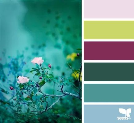 Dusk bloom color palette