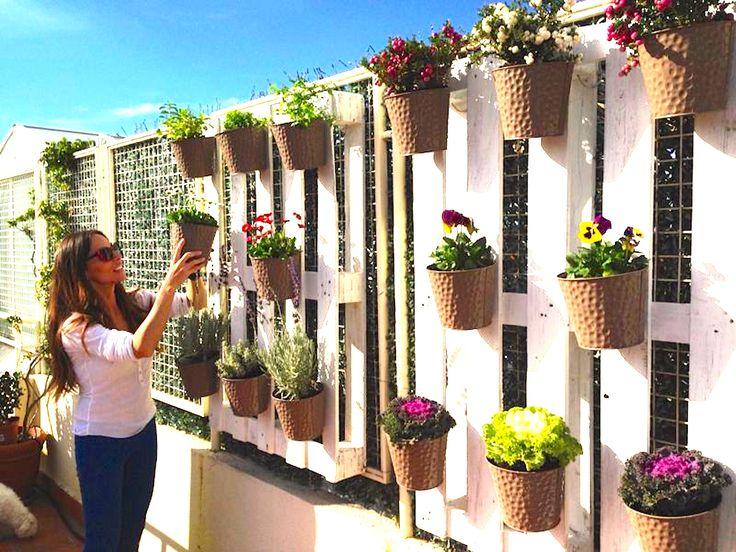 Plantas para colgar exterior jard n pinterest verano - Jardin en casa ...