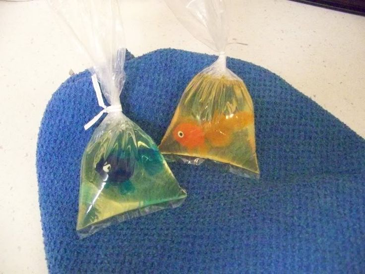 how to make pet fish soap in a bag