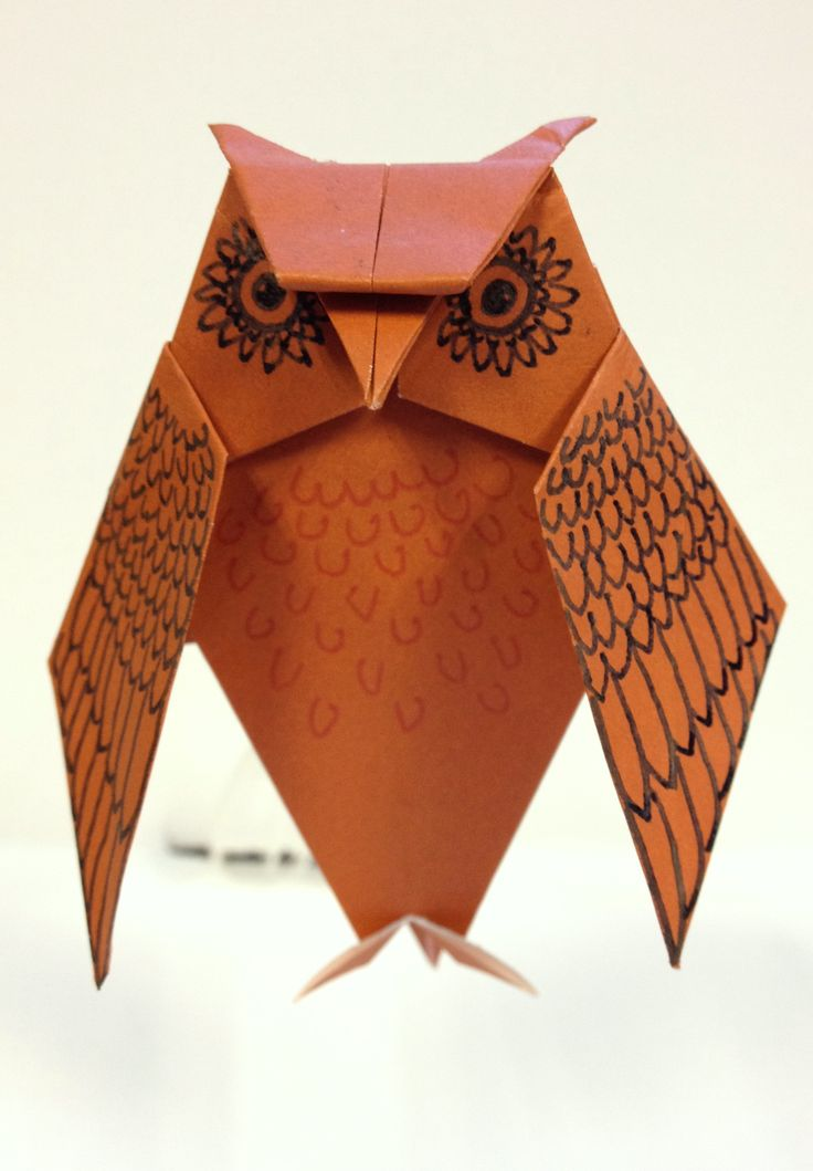 Origami owl with hand-drawn details. Neat!