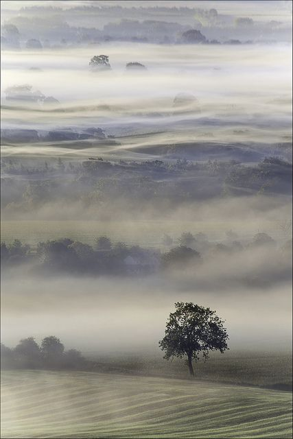 A Mist shrouded Vale of Pewsey, Wiltshire at dawn. England