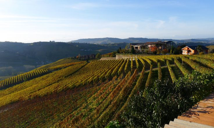 NYTimes frugal traveller - Barolo/Piedmont