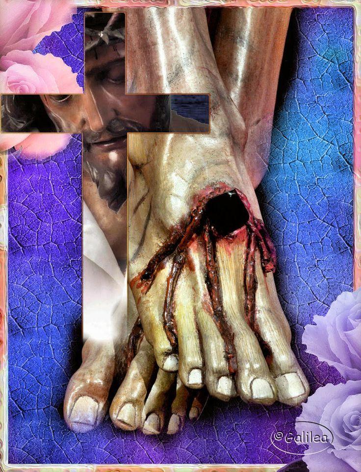 Ach, vy drobné každodenní oběti, jste jakoby polní kvítka, kterými zasypávám nohy milovaného Ježíše. Já ty drobnosti nejednou srovnávám s hrdinskými ctnostmi, neboť vyžadují hrdinství proto, že neustávají. sv. Faustýna