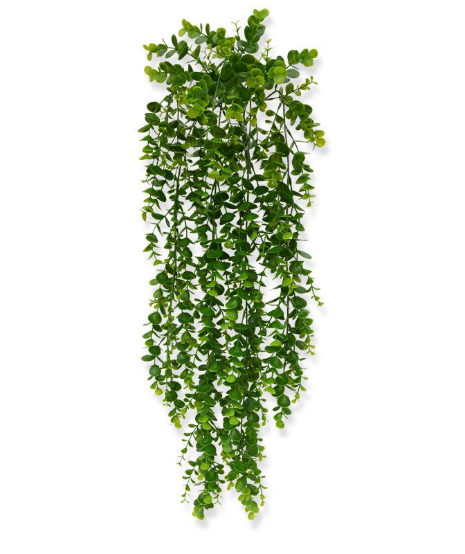 Eucalyptus Trailing Plant 70 Cm In 2020 Hanging Plants Artificial Hanging Plants Plants