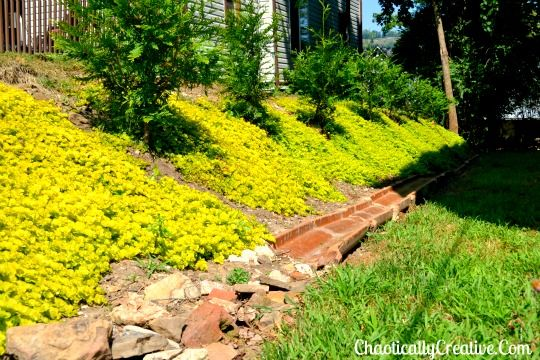 17 Best Images About Slopes And Burms On Pinterest Gardens Hillside Landscaping And Backyards