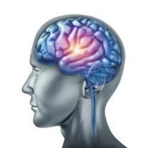 Tipos de crisis epilépticas - Salud al día