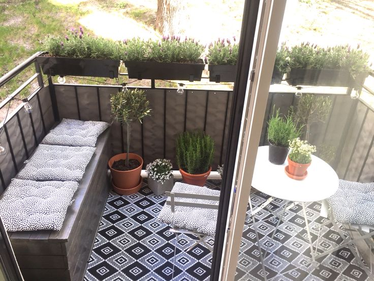 Our balcony. Lavender, olive tree, home made storage