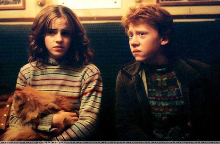 Recuerdos de infancia, Ron Y hermione <3