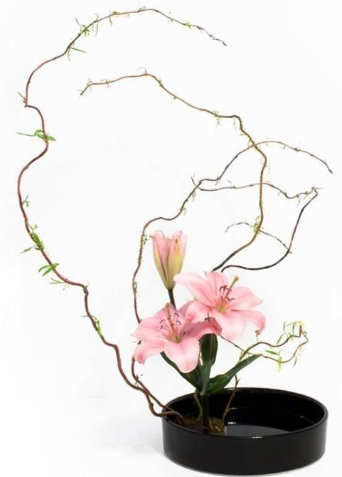 Ikebana flower arranging art