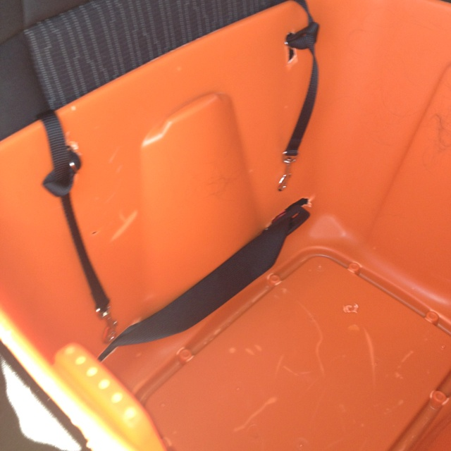 Homemade multi dog booster seat w cushions removed. Can see car seat