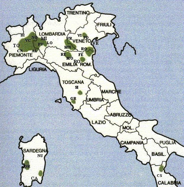 Le risaie in Italia