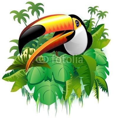 Tucano Vegetazione Tropicale-Toucan on Tropical Plants-Vector © bluedarkat #38587364