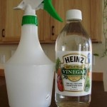 Homemade cleaners. Money savers!