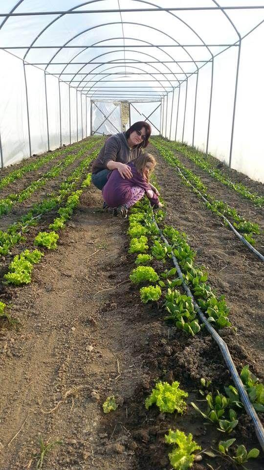 PlatFerma | Ferma ecologică Țopa, o moștenire de lăsat copiilor | http://platferma.ro