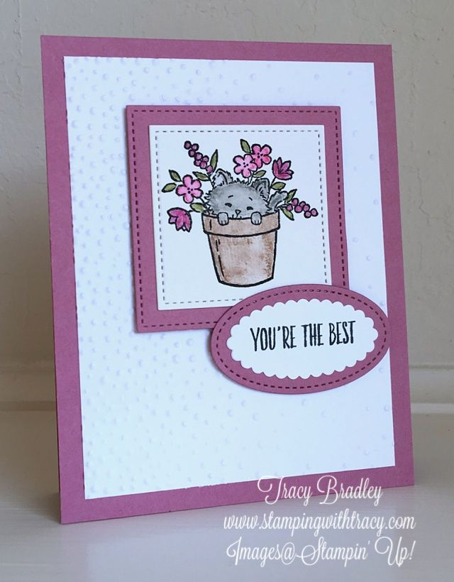Card by Tracy Bradley featuring Stampin' Up! Pretty Kitty & All Things Thanks stamp sets  www.stampingwithtracy.com