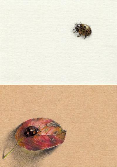 Божьи коровки *. Цв.грифели, карандаш, шариковая ручка. 6,5х9 см каждая. 2014
