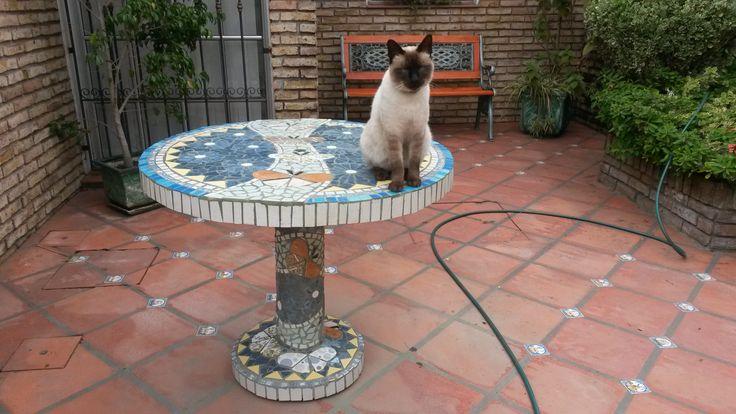 Terminado y aprobado por Persian mi gatito adorado!!!!