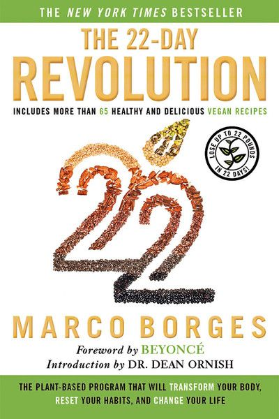 The 22 Day Revolution Cover