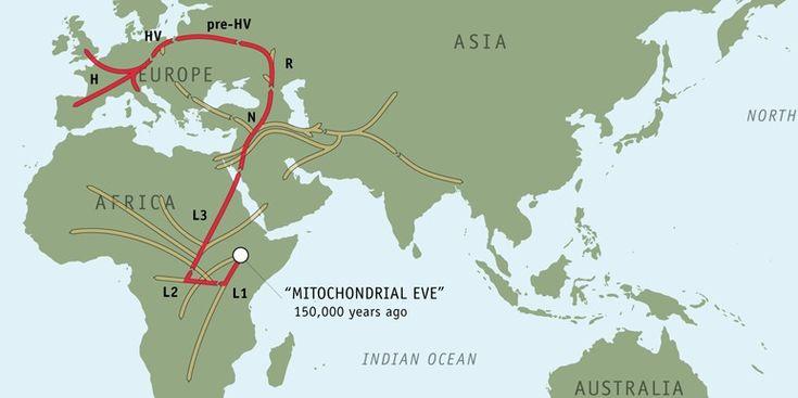 Eva Mitocondrial: TODA la humanidad desciende de una unica mujer que vivió en Africa Oriental hace unos 160.000 años.