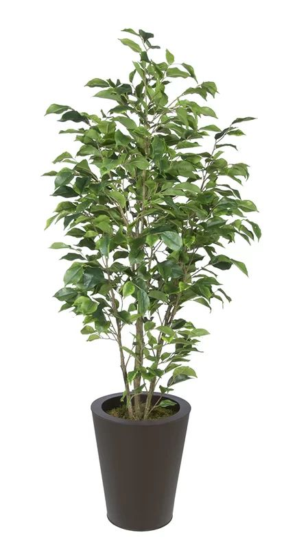 artificial indoor plants yes please - House Plants Tree