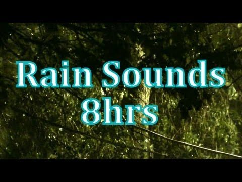 8 hours of rain sounds. Most of it is real footage of a rain storm. Some of the shots are stills of flowers and landscapes, with the peaceful sound of rain in the background.